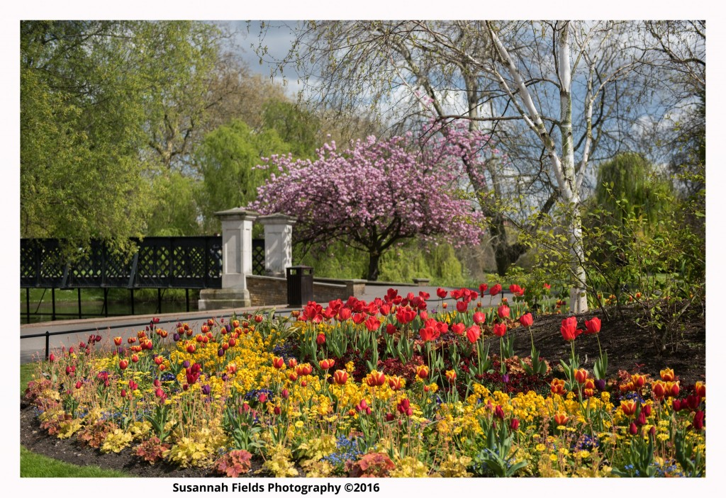 Hotel Location Photography for Danubius Regents Park, London Photography
