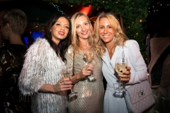 Bloggers_Christmas_Party_The_Montague_Hotel_Ski_Lodge (17)
