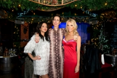 Bloggers_Christmas_Party_The_Montague_Hotel_Ski_Lodge (34)
