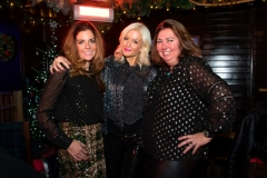Bloggers_Christmas_Party_The_Montague_Hotel_Ski_Lodge (12)