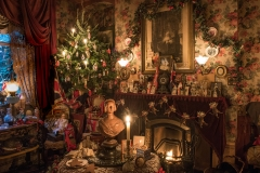 Dennis-Severs-House-at-Christmas-Photography (10)