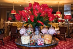 The-Rubens-Hotel-Amenities-and-Headshot-Photography-Shoot (1)